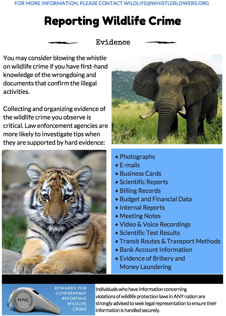 Evidence for Reporting Wildlife Crime copy