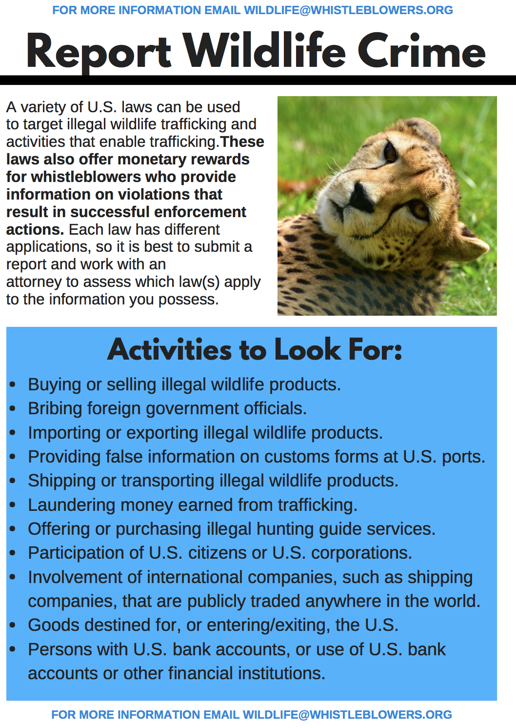 Guidance for reporting wildlife crime