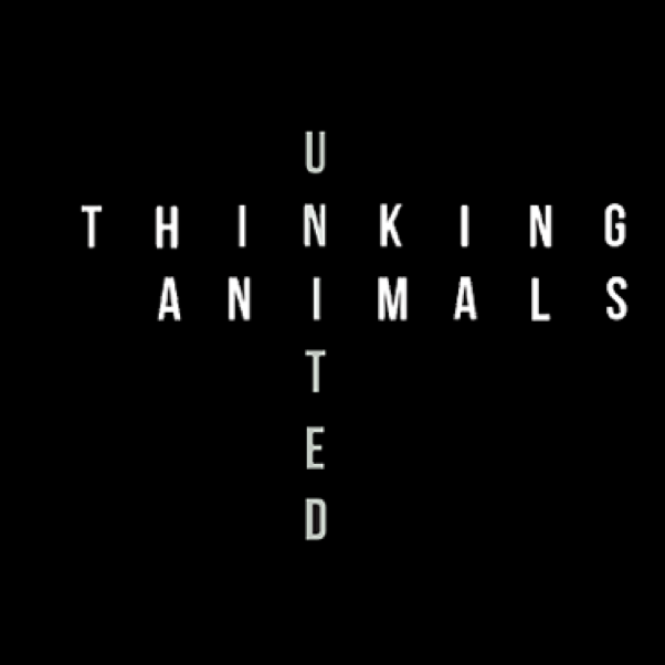 Thinking Animals United